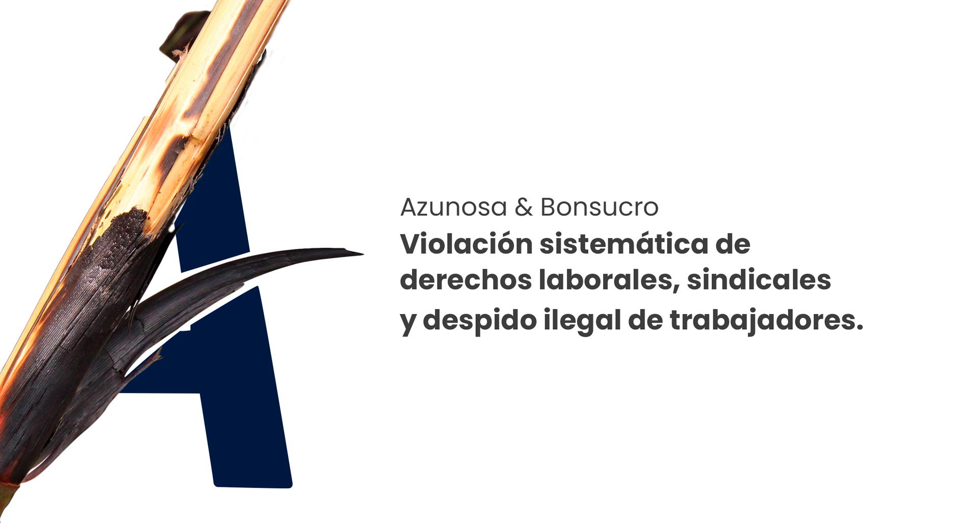 20200924_CabezalBonsucro